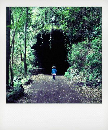 La Palma: bosco di Los Tilos con i bambini
